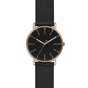 Skagen Fall SKW6401